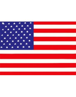 image: Bandiera Stati Uniti