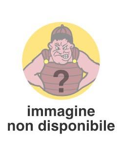 image: Bandieroni copricurva