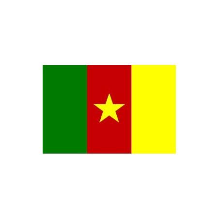 image: Bandiera Camerun